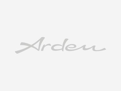 "Arden DAKAR III Rad in 10 x 22"" TÜV-Muster"